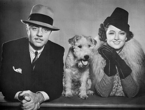 Reference:  http://www.altfg.com/Stars/actorsp/powell-william-myrna-loy-asta.jpg